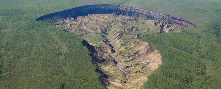 Сибирската врата към подземния свят разкри древна гора