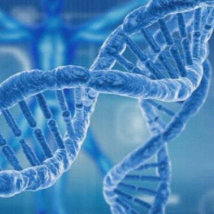 Българи описаха нова невродегенеративна болест