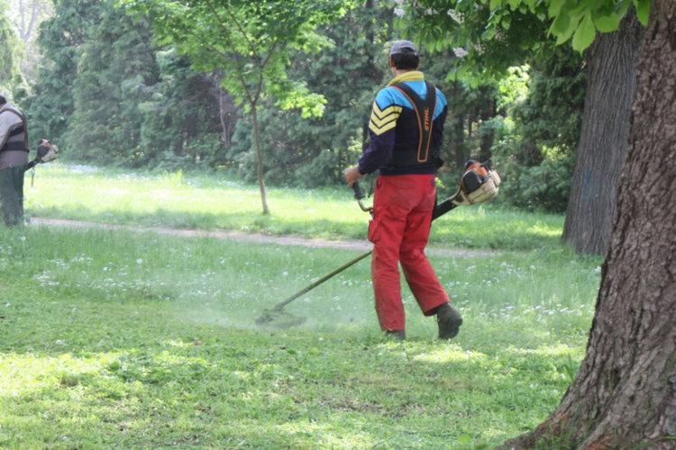 150 дка паркове и градини в Кърджали са пръскани за кърлежи