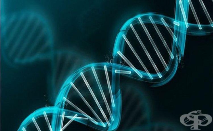 Български невролози откриха нова невродегенеративна болест