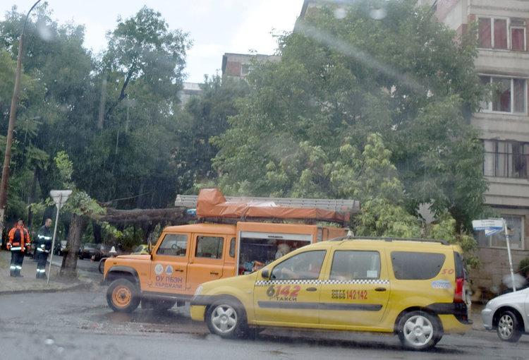 """Бурята в Кърджали пречупи като кибритена клечка дърво,затвори """"Републиканска"""""""