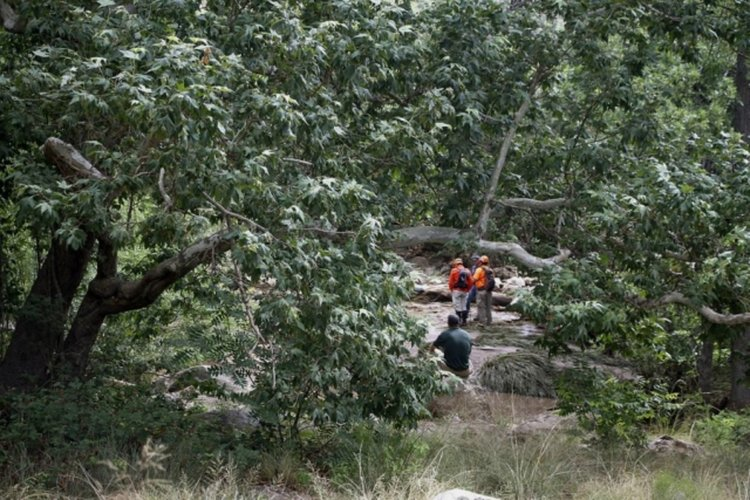 Водна стихия взе 9 жертви в Щатите