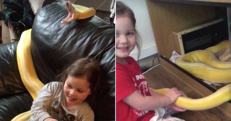4-годишно момиченце и 4-метрова змия са най-добри приятели (видео)