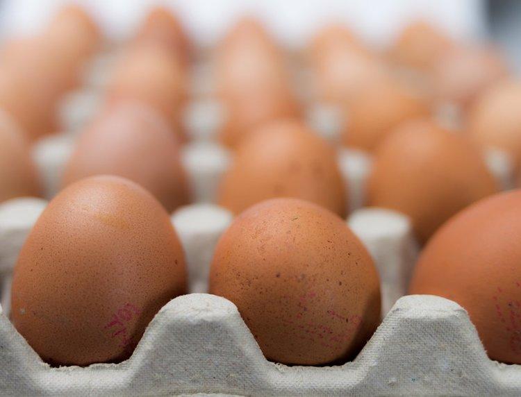 Милиони яйца с фипронил били доставени в 15 страни - в ЕС и извън него