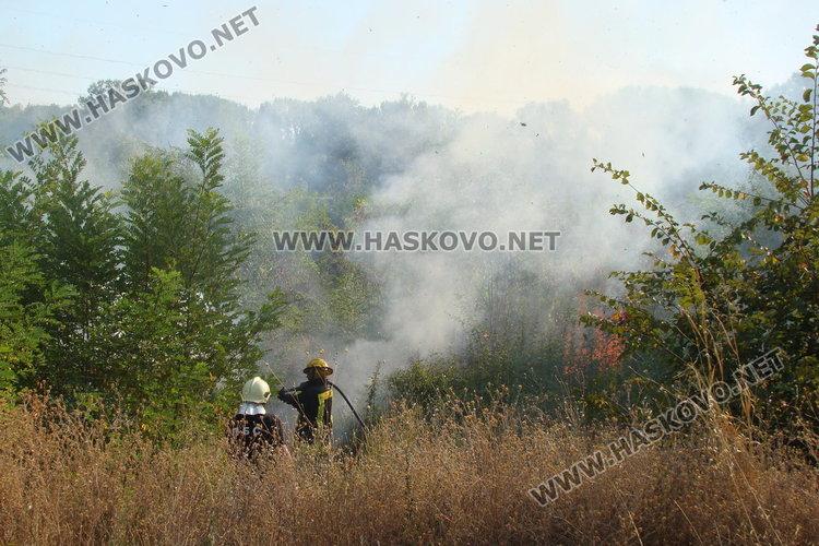 Пожар в сухи треви в Брод гасиха огнеборци