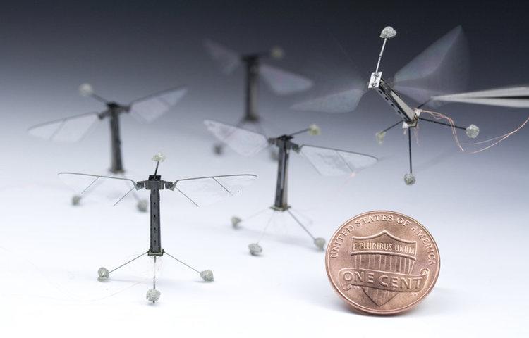 Харвард създаде автономен робот пчела (видео)
