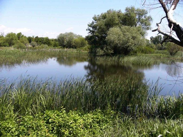 Популяризират биоразнообразието в региона с дегустация на рибена чорба