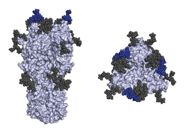 Ваксината срещу грип през 2016 г. била компрометирана заради мутация