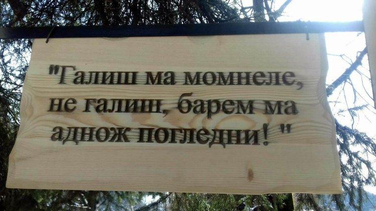 Първия цитат от песен в превод гласи: И да ме обичаш девойко, и да не ме обичаш, поне веднъж ме погледни...