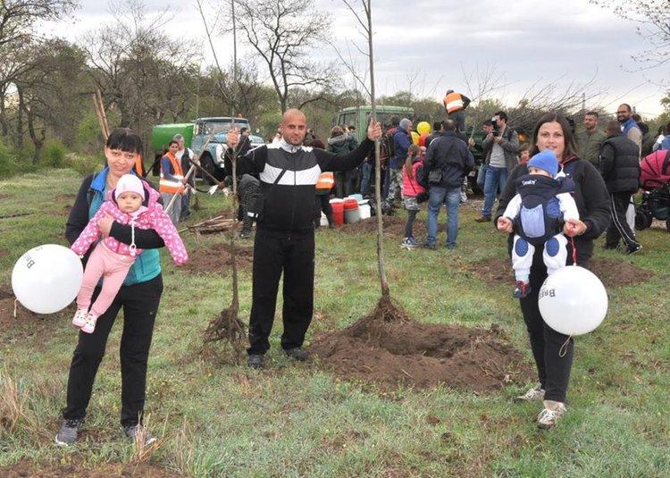 На Цветница в Димитровград отново садят дървета за новородени