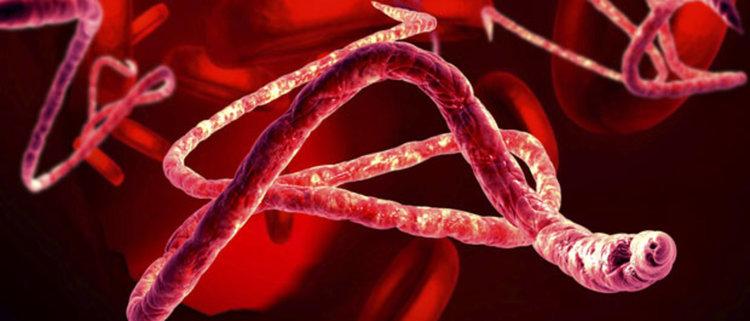 СЗО: Мистериозна болест може да предизвика пандемия