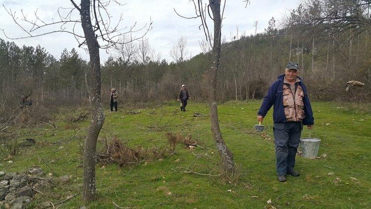 С 800 фиданки община Момчилград стартира зелена инициатива
