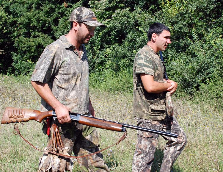 Украински гургулици на мушката на италиански и гръцки ловци в региона