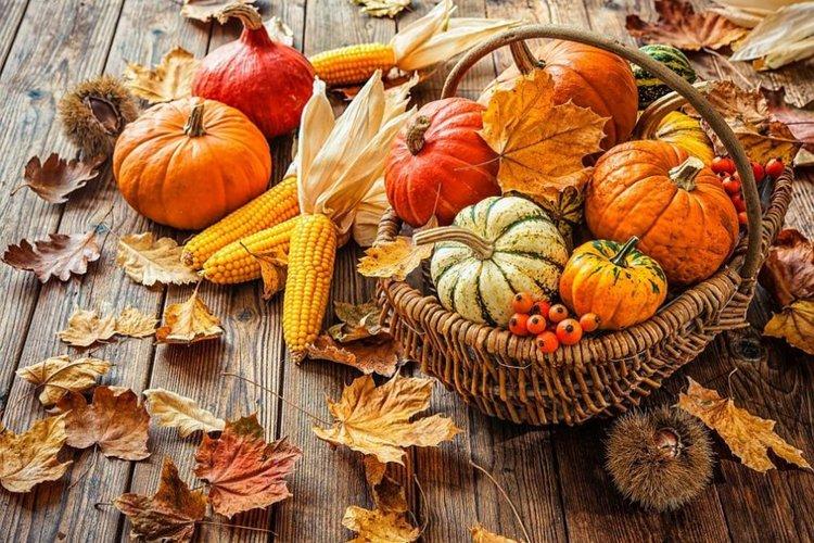 Топ 6 храни за есента, за да не се разболявате