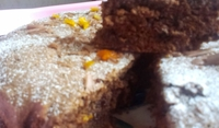 Сладкиш с шоколад и портокалови корички
