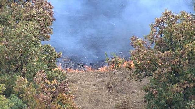 15 000 дка обхвана пожара край Остър камък, Иваново и Елена